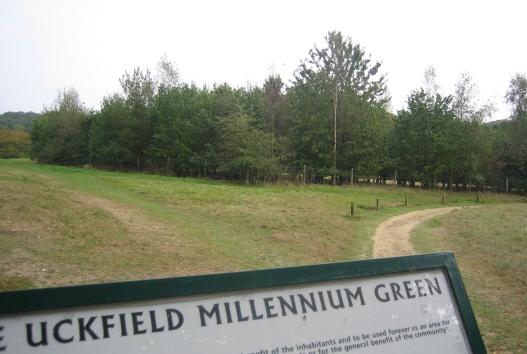 millennium_green