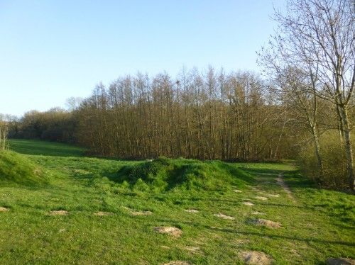 Boothland Wood, Uckfield, which is behind the skate park at the Victoria Pleasure Ground.