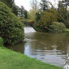 The Sheffield Park garden cascade.