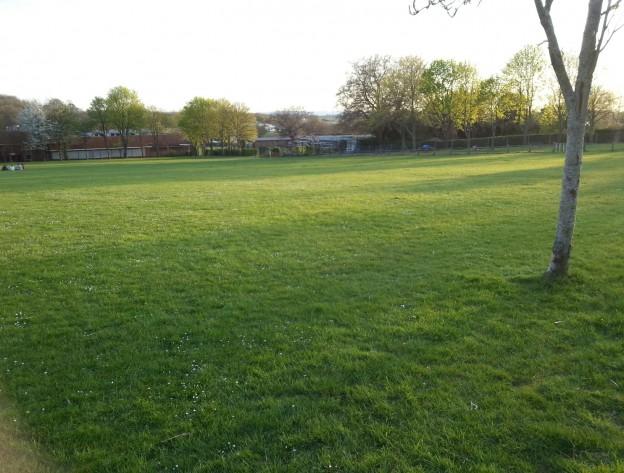 Luxford Field