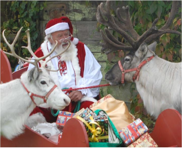 Father Christmas is expected to arrive at The llama Park, Wych Cross, at the end of November.