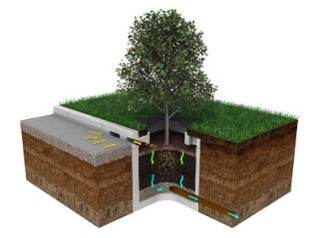 Tree Pit Drainage System Could Help With Uckfield Flash
