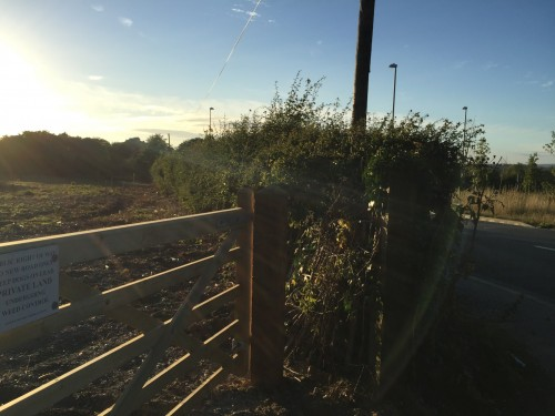 eastbourne-road-100-homes