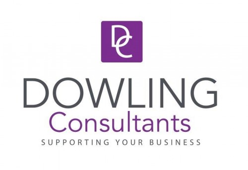 Dowling Consultants logo