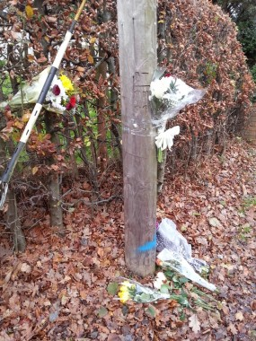 Fatal crash scene flowers 2