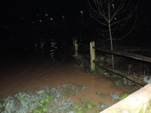 flood-watch-jan-2016-Hempstead-Meadow