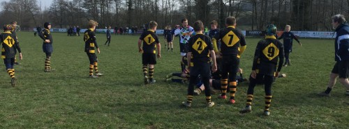 uckfield-rugby-march-2016-8