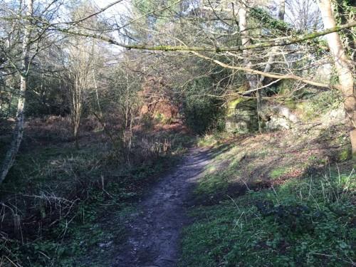 west-park-nature-reserve-4