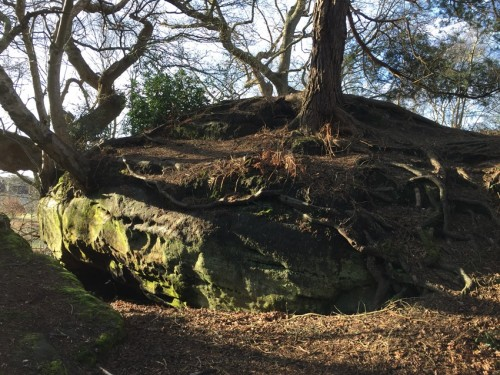 west-park-nature-reserve-5