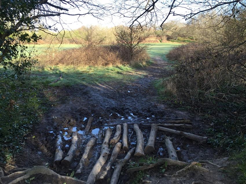 Wellies Needed For West Park Wanderings Uckfield News