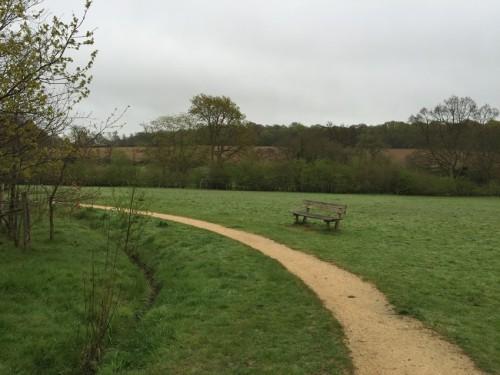 millennium-green-path-3