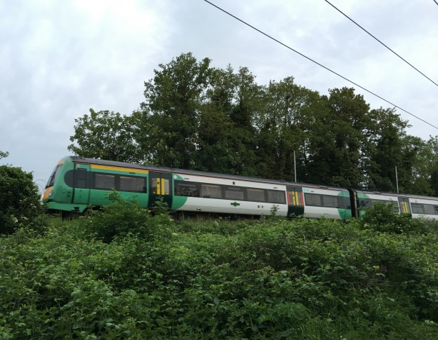 Uckfield Line train heading for London Bridge, photographed from the Hempstead Meadows Nature Reserve