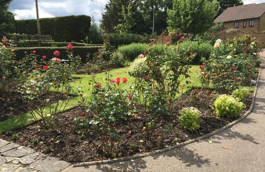 harlands-villas-17-roses