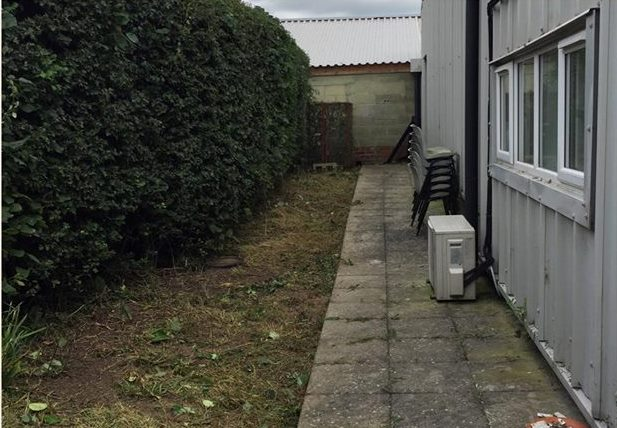 clean-cut-gardening-hedge-1-after