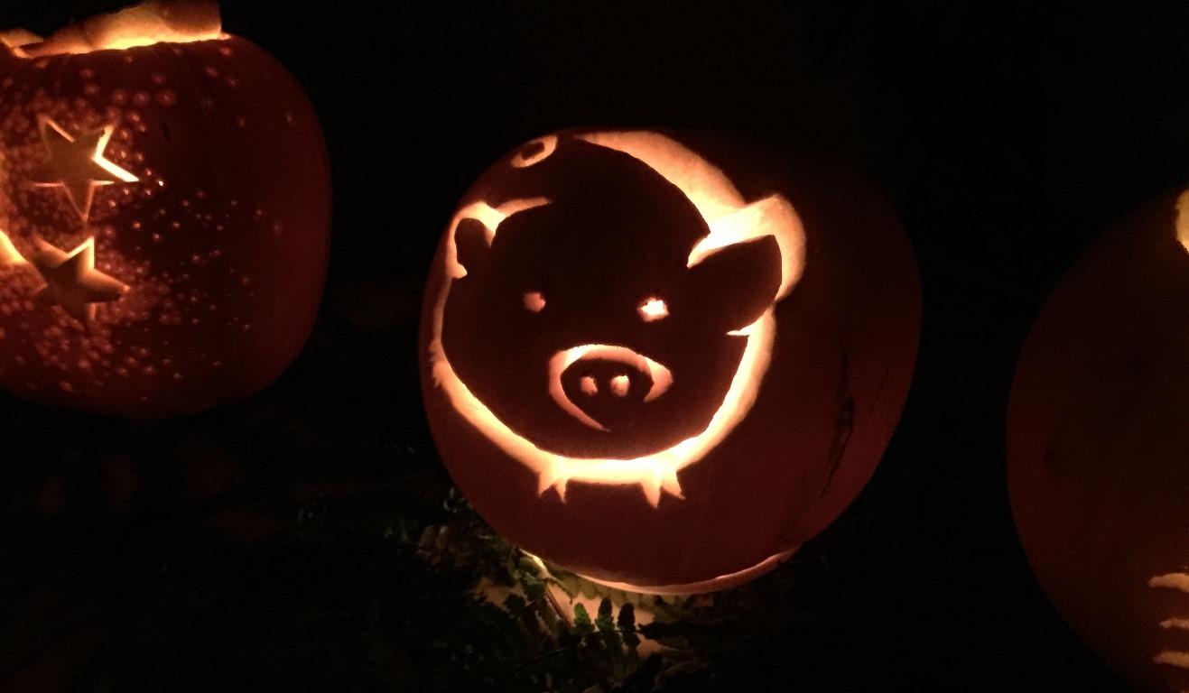 little-horsted-pumpkins-12