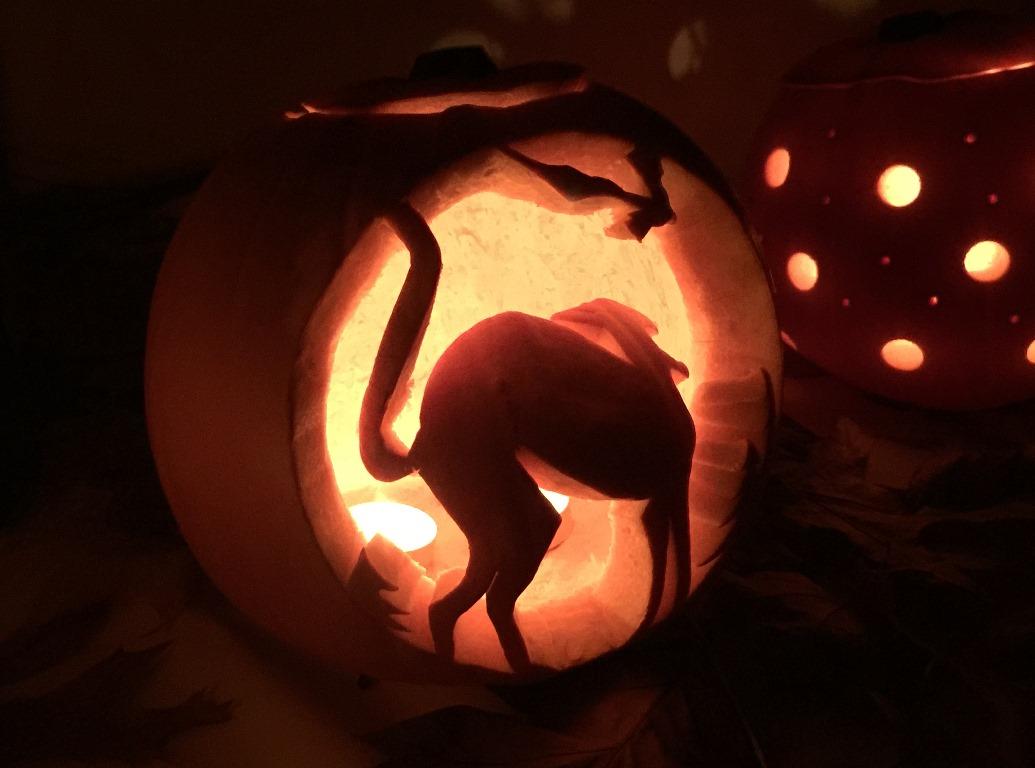 little-horsted-pumpkins-5