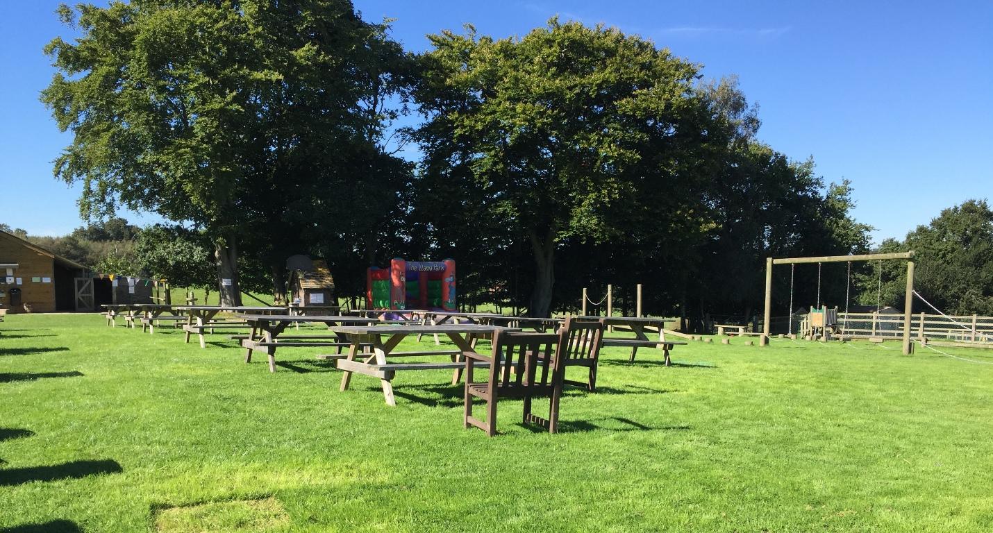 llama-park-picnic-play-area