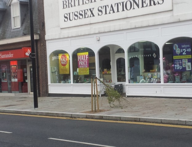 tree-sussex-stationers