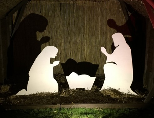 holy-cross-trees-nativity