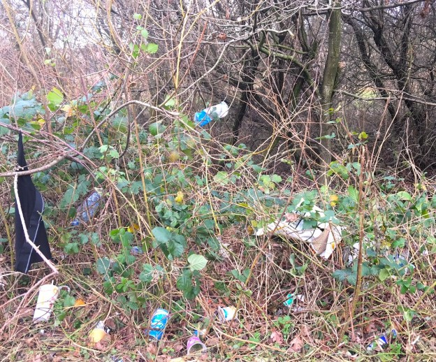 Litter on the side of the A22 Uckfield by-pass in January 2018