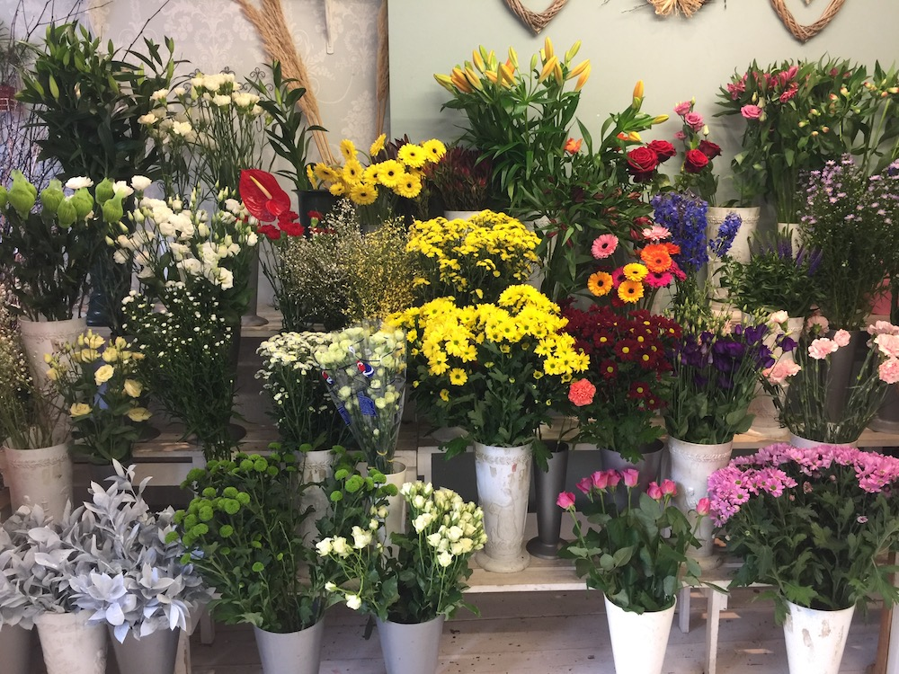 flower-shop-jan-17