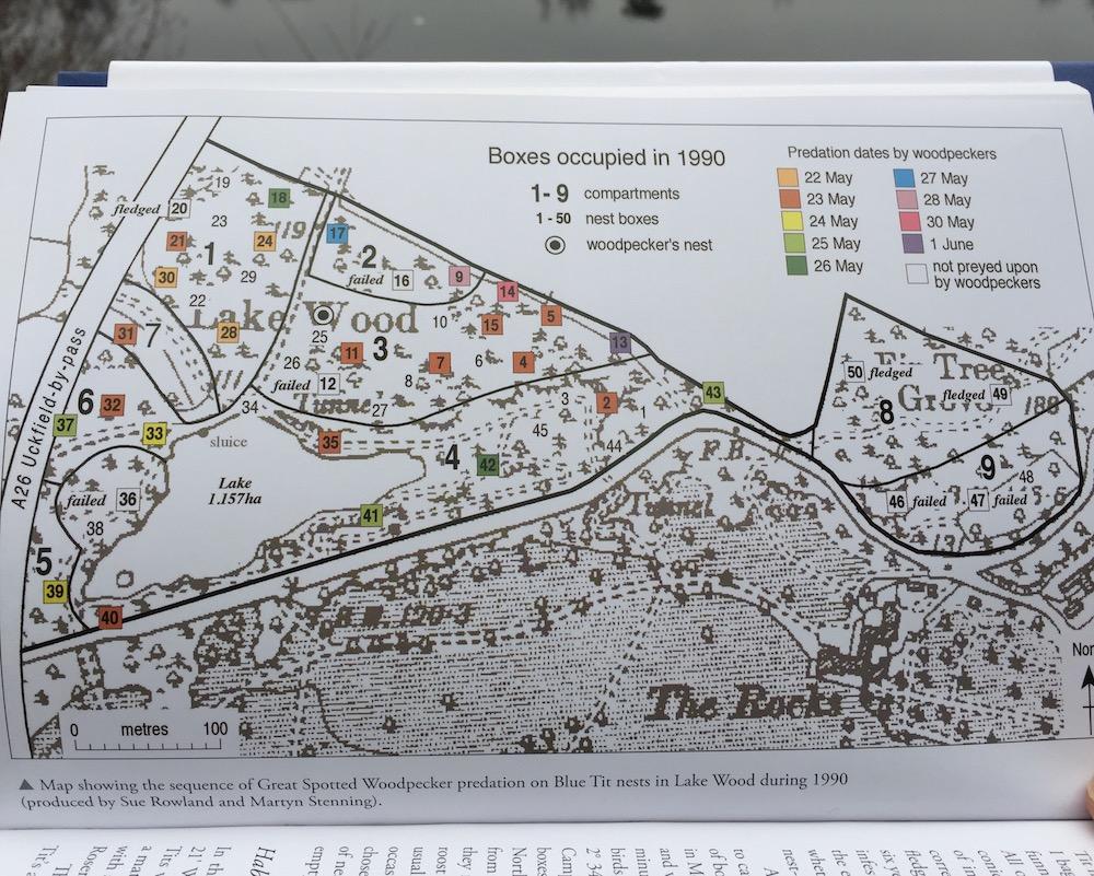 martyn-stenning-woodpecker-map