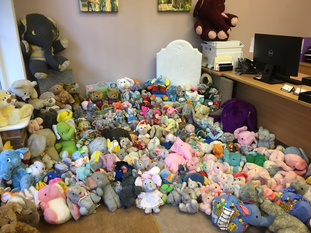 CPJ Field teddy collection2