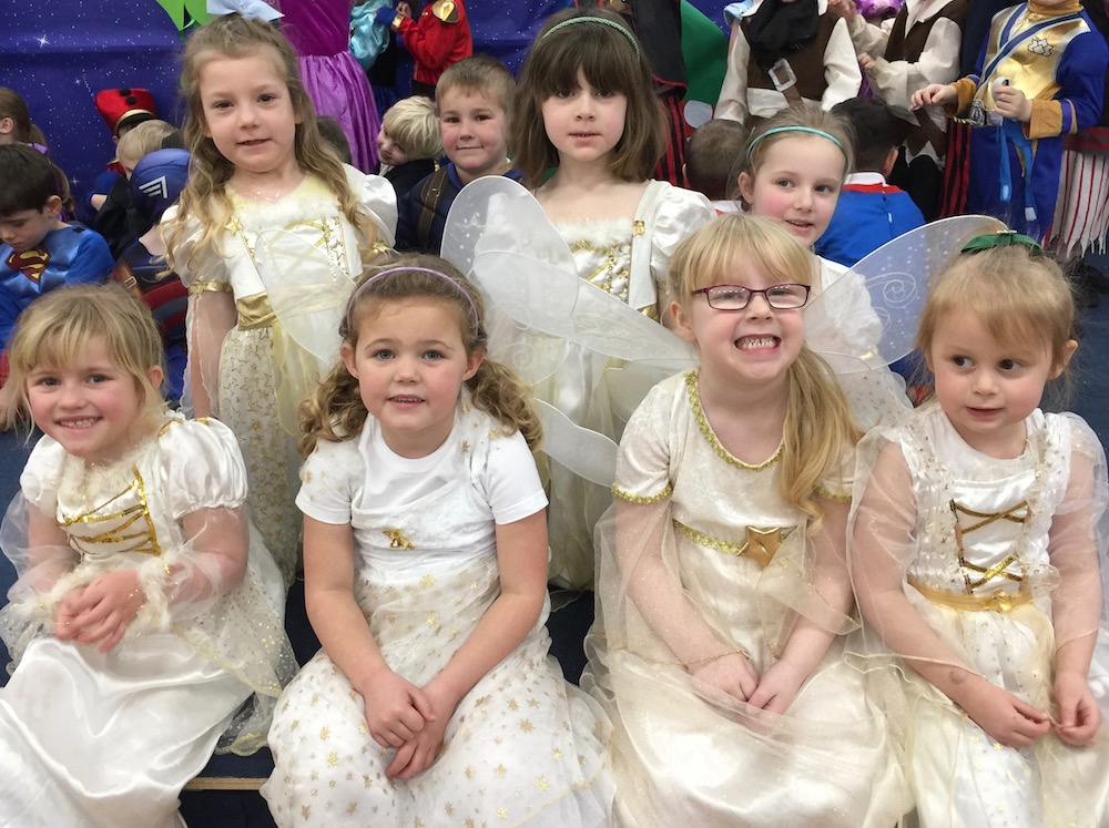 manor-primary-fairy-godmothers