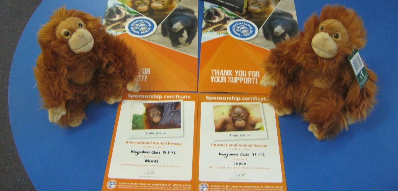 framfield-primary-school-orangutans-2
