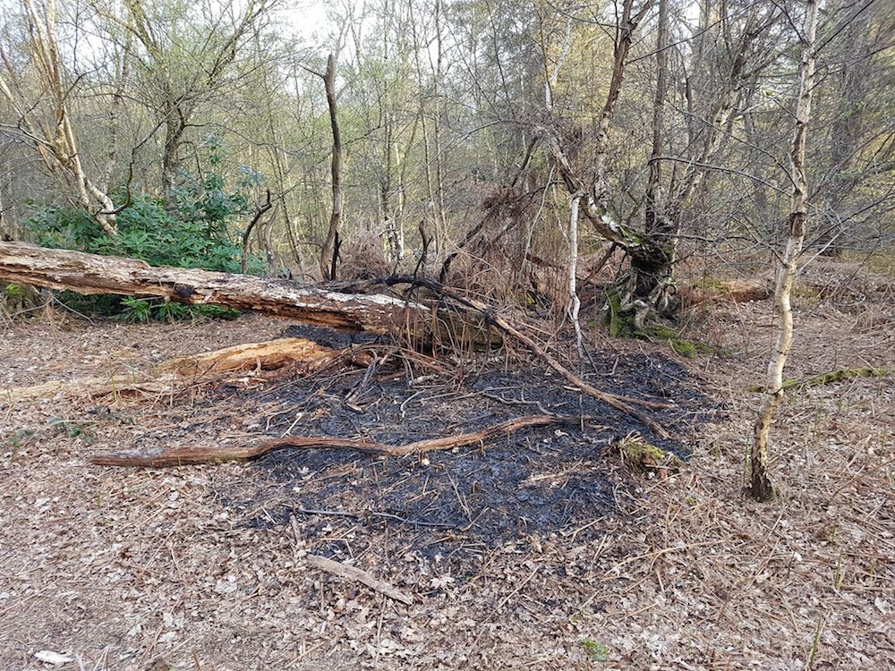 lake-wood-fire-site