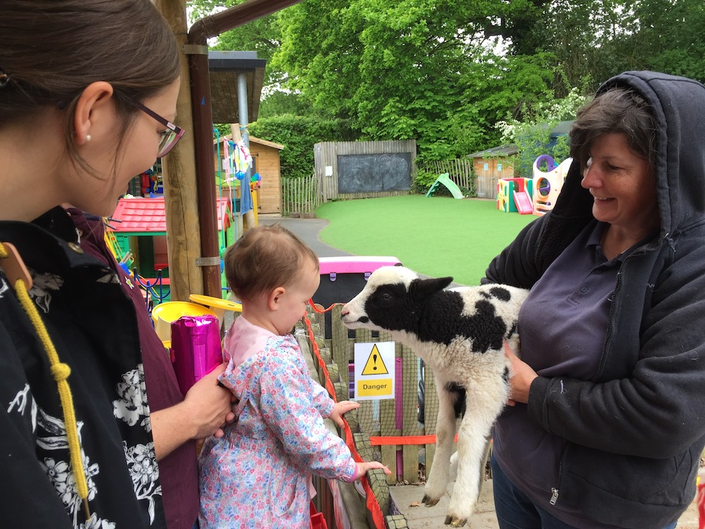 framfield-fair-meet-a-lamb