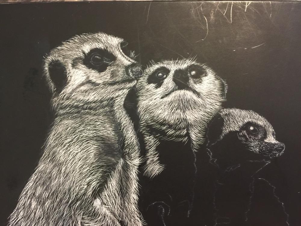 bridge-arts-jenny-dalleywater-meerkats