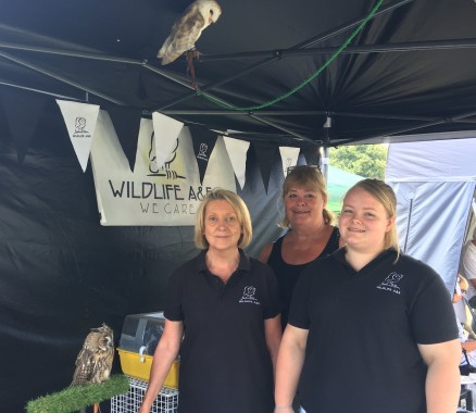 Merlin, a long earned European owl (bottom) and Ossie, a barn owl, were the shy stars of the Wildlife A & E stand. They are pictured with (from left) Sue Sturton-Davies, Lily Evans and Debbie Johnson.