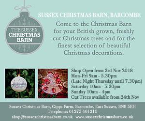 sussex-christmas-barn-advert