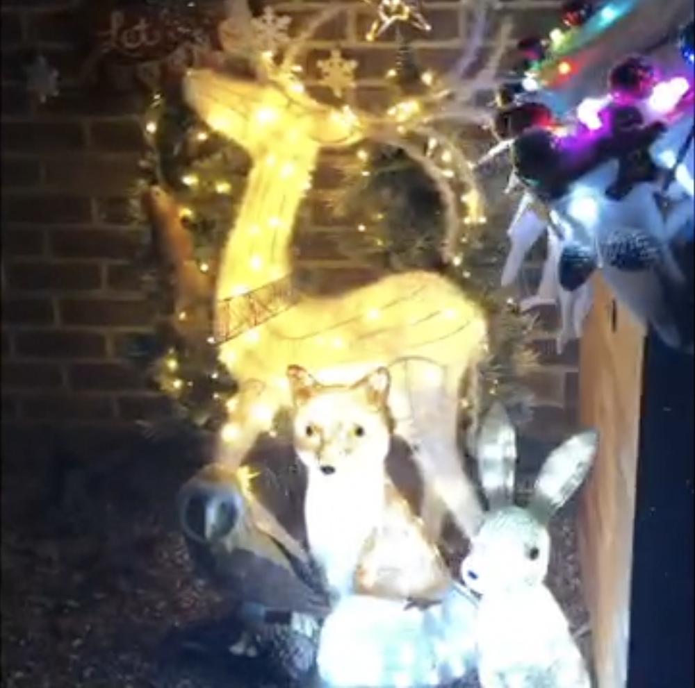 christmas-lights-framfield-carly