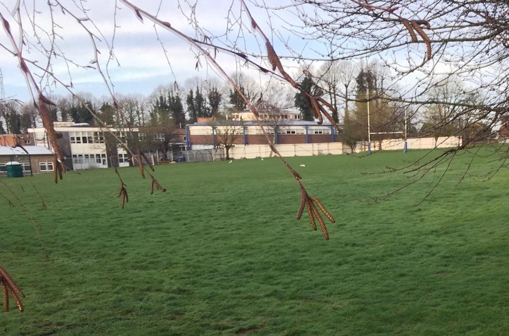 uckfield-college-builders-fence