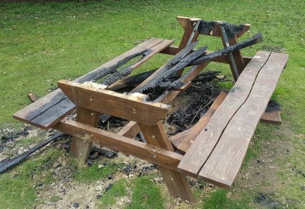 millennium-green-picnic-table-fire