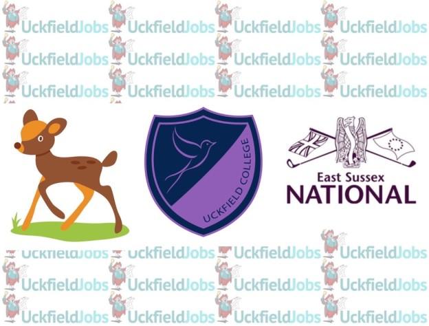 job-vacancies-nutley-preschool-college-east-sussex-national