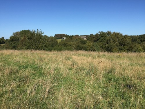 Land in Ridgewood which is set to be developed for more housing